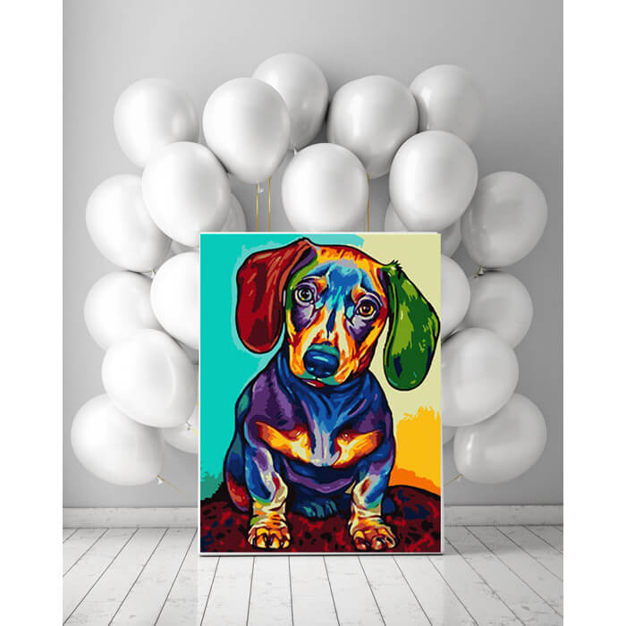 Paint by numbers dachshund multicolored