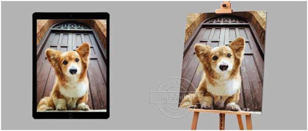 Malen nach Zahlen Wunschmotiv für Hunde