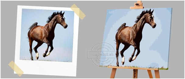 Custom Paint by Numbers from your own Horses photo