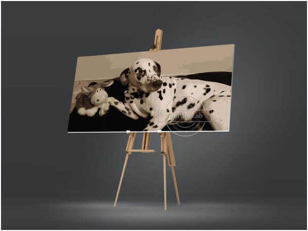 Custom Paint by Numbers for Pets- DIY Painting