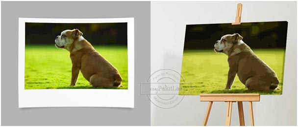 Custom Paint by Numbers from your own Dog's photo