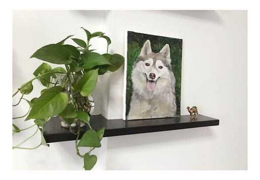Malen nach Zahlen Eigenes Foto Hund