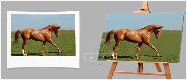 Malen nach Zahlen als Wunschmotiv von Ihren eigenen Pferdefotos