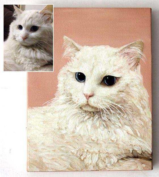 Malen nach Zahlen Vom Foto Katze