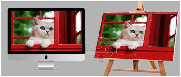 Custom Paint by Numbers from your own cat's photo