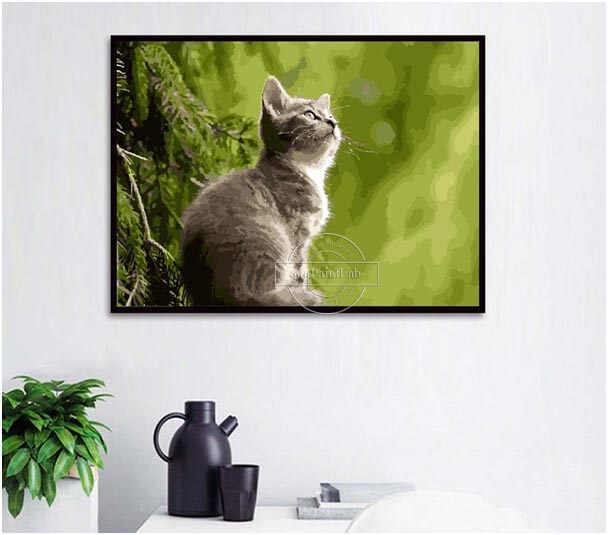 Custom Paint by Numbers from your own cats' photos