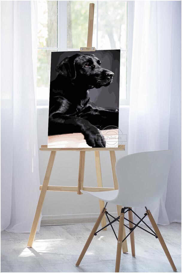 Custom Paint by Numbers from your own Dogs photo
