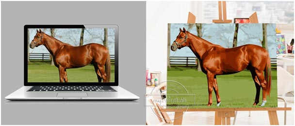Paint by Numbers from Your Own Photo Horse