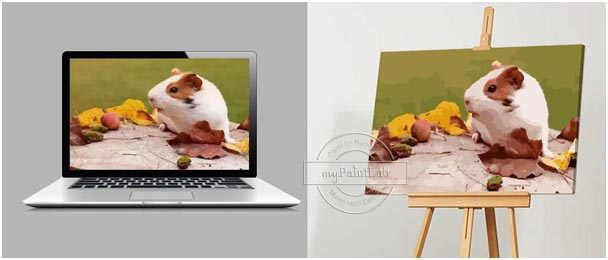 Custom Paint by Numbers from your own pet's photo