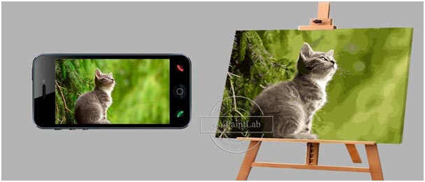 Custom Paint by Numbers from your own photos – cats photos