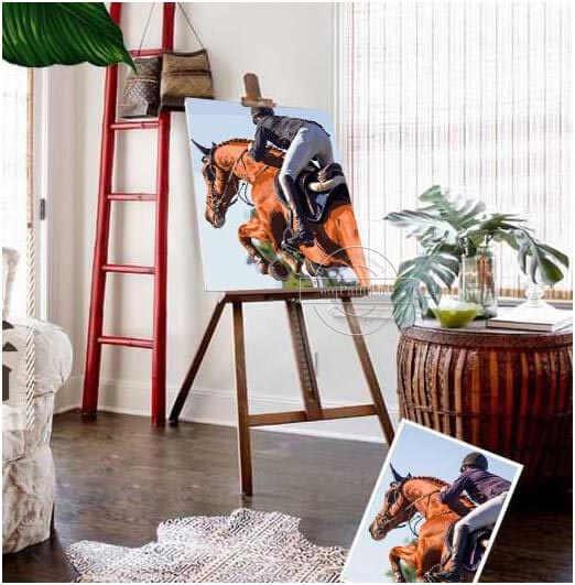 Malen nach Zahlen Wunschmotive für Pferde